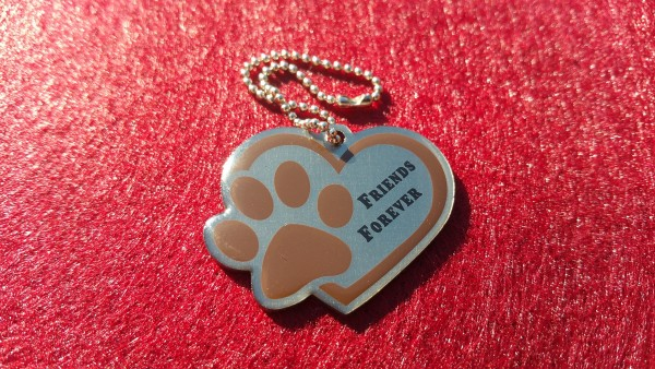 Friends Forever Travel Tag - braun